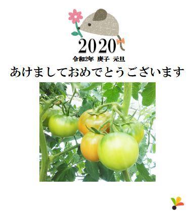 20200101_年賀