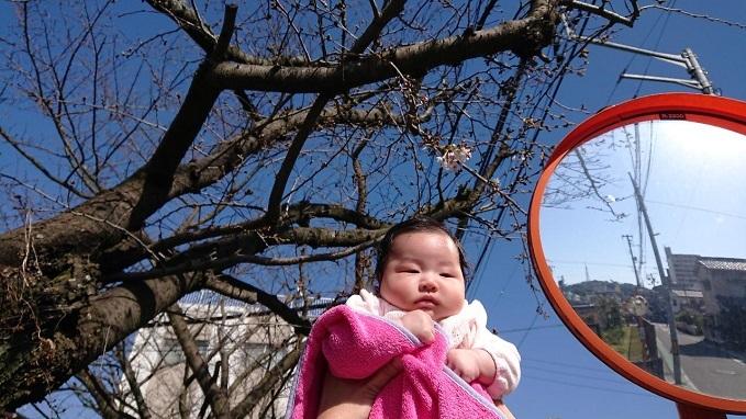 202003愛娘と桜 (3)