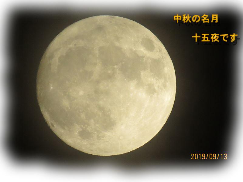 IMG_5612_R.jpg