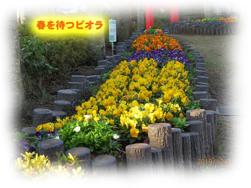 IMG_5712_R.jpg