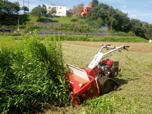 草刈 (800x600)