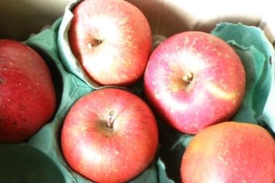 田舎から送られてきたリンゴ