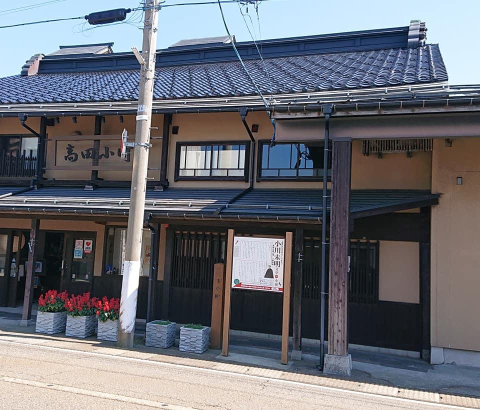 【たかだ花ロード・2019】-6