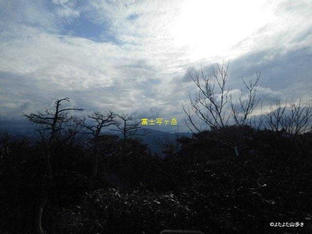 DSCN8724.jpg