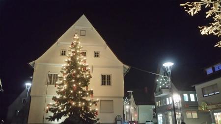 近所の役所前のクリスマスツリー1