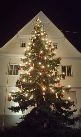 近所の役所前のクリスマスツリー2