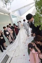 wedding201993.jpg