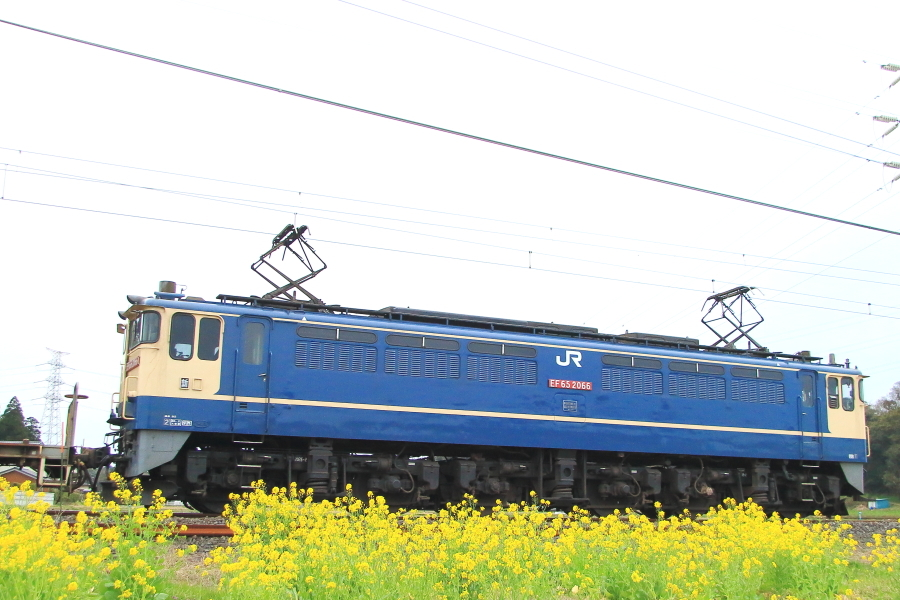 900-EF65-200313C0.jpg