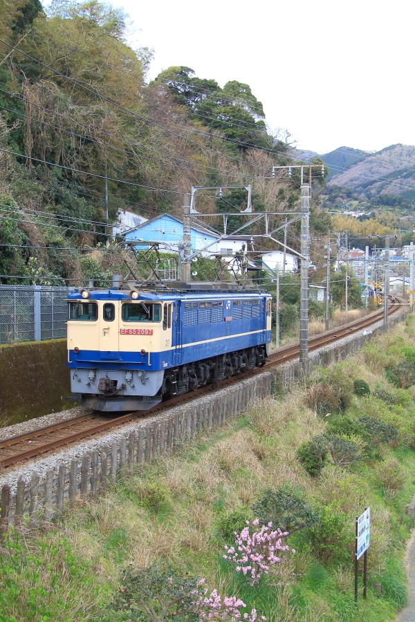 900-EF65-200317E1.jpg
