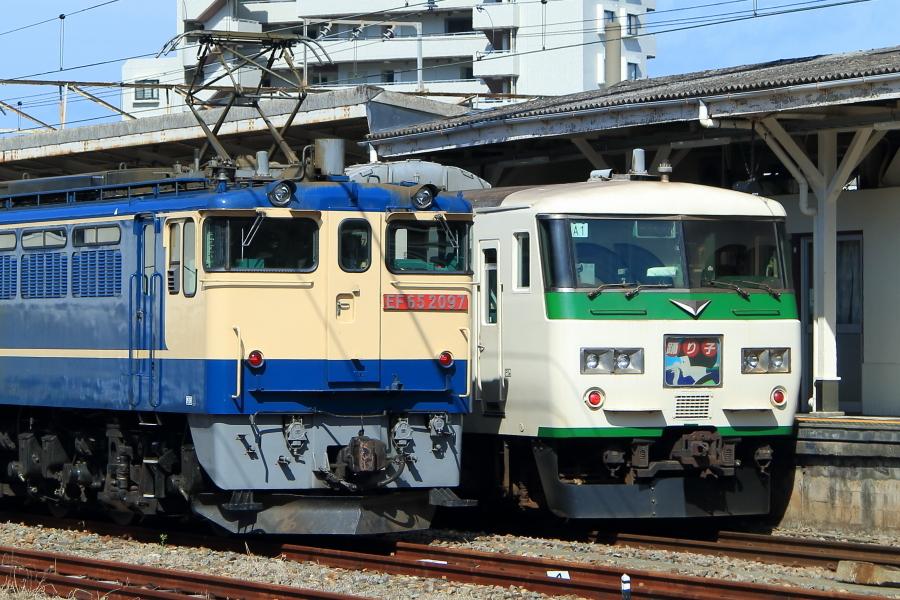 900-EF65-200317Y4.jpg