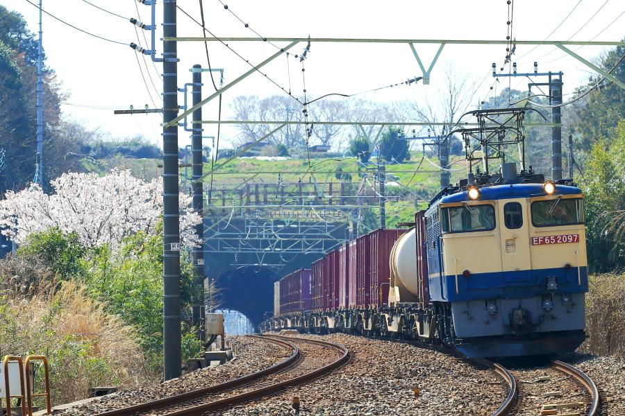 900-EF65-200319A9.jpg