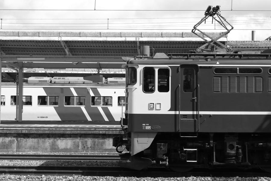 M900-EF65-200317W2.jpg