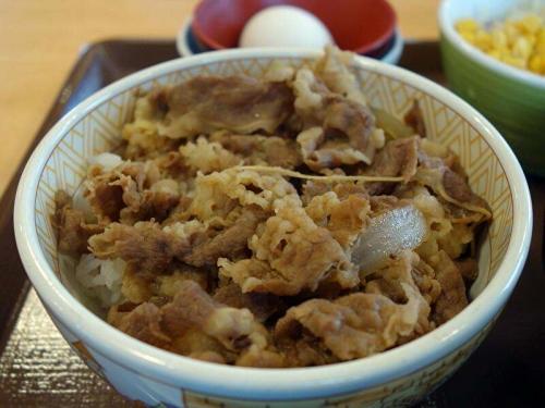 牛丼(並盛)