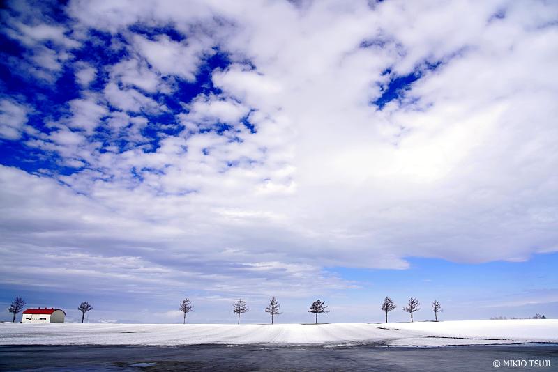 絶景探しの旅 - 絶景写真 No.1264 春近い北の大地から (メルヘンの丘/北海道 網走郡 大空町)