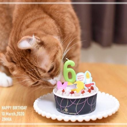 Happy Birthday るったん♡1